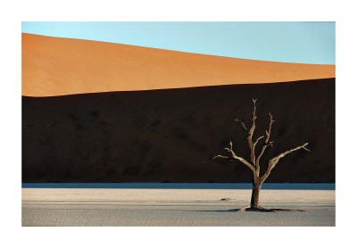 Deadvlei Graphic