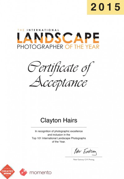 Int Landscape of the year 2015